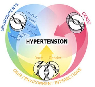 Hypertension now more common in low and middle-income countries